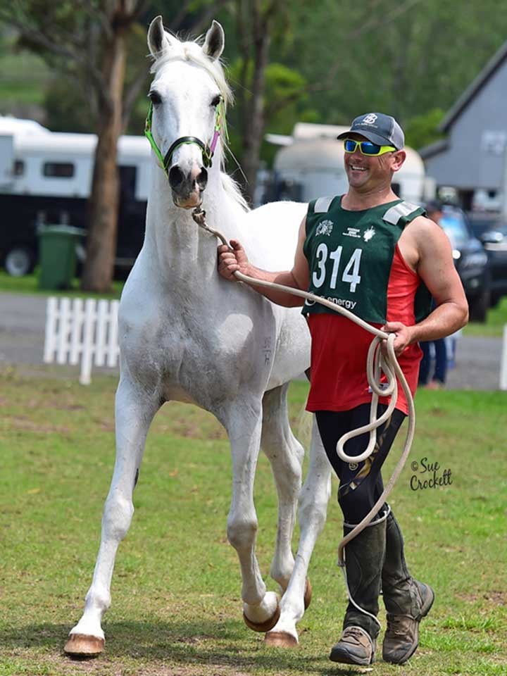 Champion Endurance Horse was Burren-Dah Gladiator.