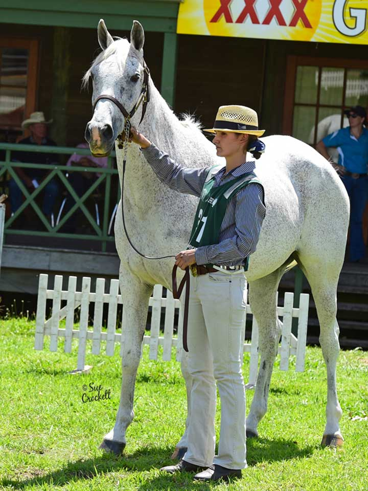 Derivative Arabian winner was La-Battist Shadow Fax with Erin Krahnen.