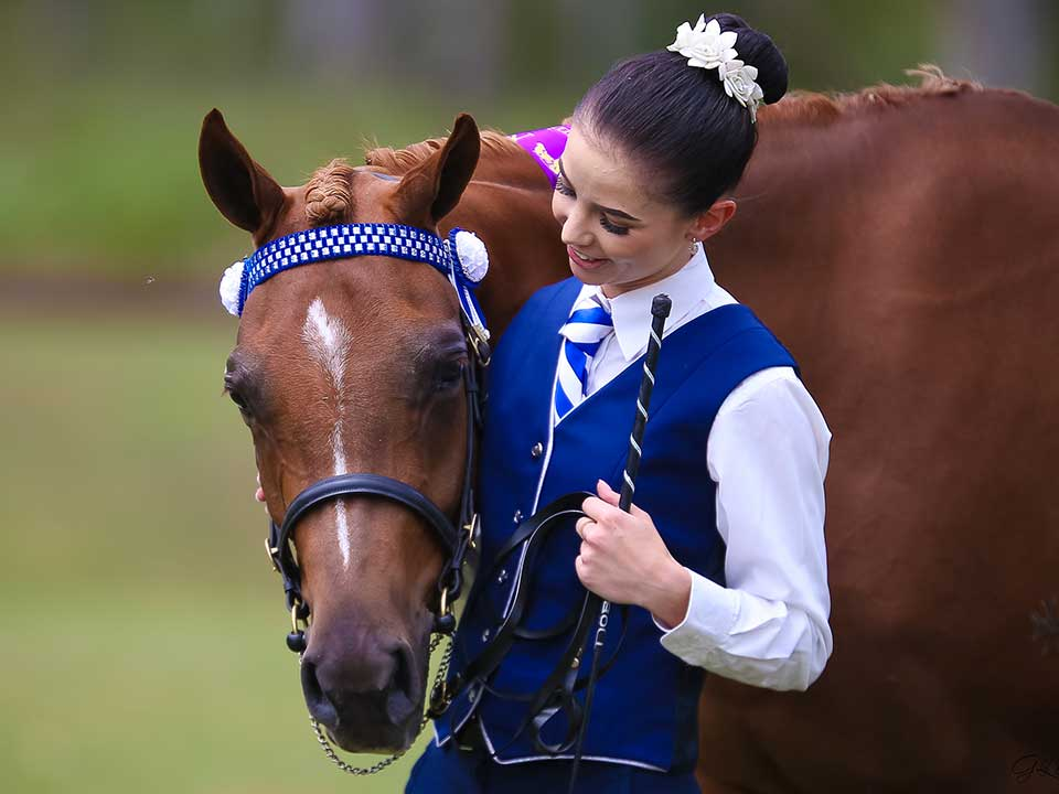Madeleine leva with the Anglo Arabian Kelaray Enchant