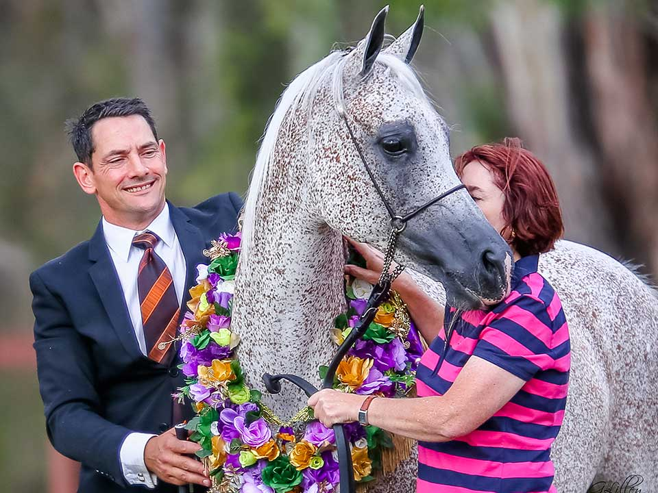 Supreme Purebred Arabian Chance to Dance receives a cuddle from one of her owners, Jane Farrell