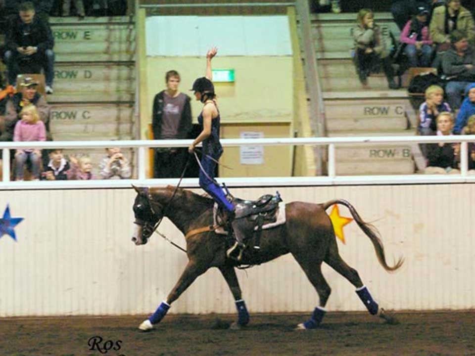 Purebred gelding Episode One performing in the trick riding demo at a Night of Stars