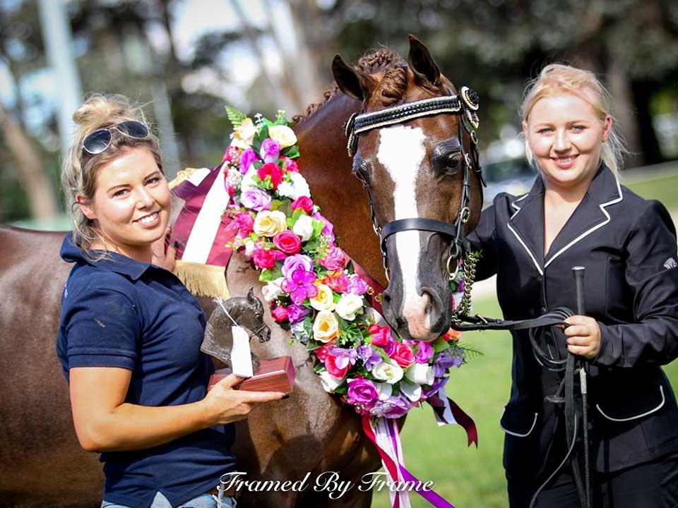 """Grand Champion Derivative """"Annastazia CSH"""" with Lucy Silinzieds & Brittney Hardwick"""