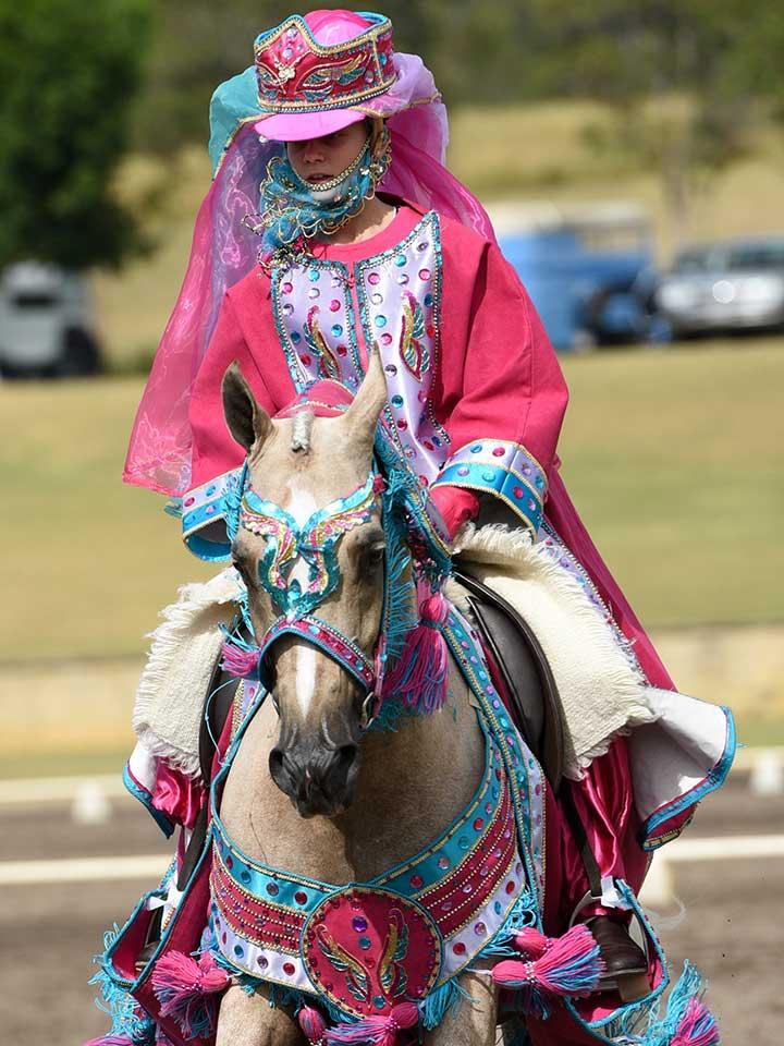Sport-Horse-costume